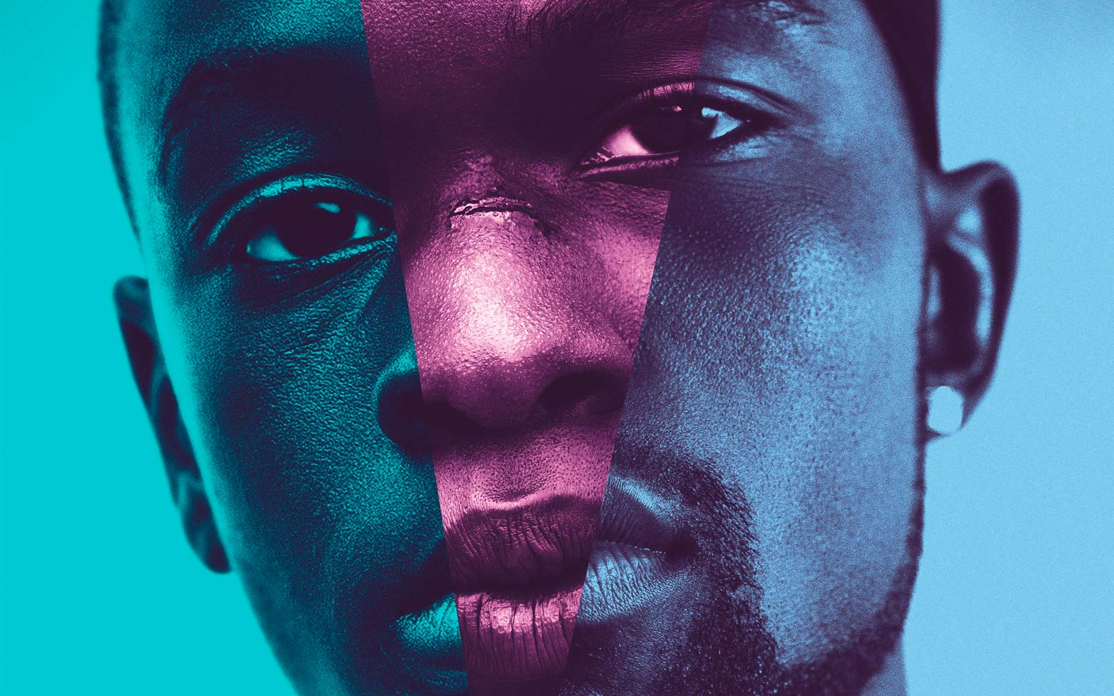 MOONLIGHT © DCM Film Distribution